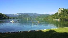 Επαγγελματικοί κωπηλατώντας αθλητές που εκπαιδεύουν να συναγωνιστεί στη λίμνη βουνών, φανταστική φύση απόθεμα βίντεο