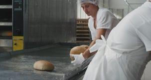 Επαγγελματικός αρχιμάγειρας αρτοποιών εργοστασίων αρτοποιείων σε μια ειδική ομοιόμορφη απογείωση αρχιμαγείρων το ψωμί από τη μηχα απόθεμα βίντεο