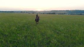 Επαγγελματικός θηλυκός ιππικός οδηγά ένα άλογο πέρα από έναν ογκώδη τομέα απόθεμα βίντεο