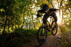Επαγγελματικός ποδηλάτης που οδηγά το ποδήλατο βουνών στο δασικό ίχνος φθινοπώρου Ακραίος αθλητισμός και έννοια ανακύκλωσης Endur στοκ εικόνες