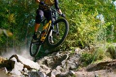Επαγγελματικός ποδηλάτης που οδηγά το ποδήλατο βουνών στο δασικό ίχνος φθινοπώρου Ακραίος αθλητισμός και έννοια ανακύκλωσης Endur στοκ εικόνα