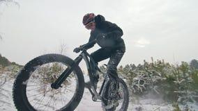 Επαγγελματικό ακραίο δροσερό οδηγώντας παχύ ποδήλατο ποδηλατών αθλητικών τύπων υπαίθρια Extremal γύρος μέσω των δέντρων πεύκων Το απόθεμα βίντεο