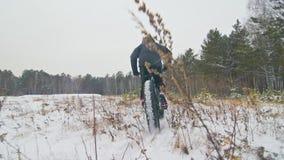 Επαγγελματικό ακραίο δροσερό οδηγώντας παχύ ποδήλατο ποδηλατών αθλητικών τύπων υπαίθρια Extremal γύρος μέσω των δέντρων πεύκων Το φιλμ μικρού μήκους