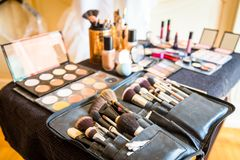 Επαγγελματικό σύνολο βουρτσών makeup Στοκ φωτογραφία με δικαίωμα ελεύθερης χρήσης