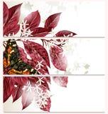 Επαγγελματικές κάρτες μόδας που τίθενται με τα λουλούδια Στοκ εικόνα με δικαίωμα ελεύθερης χρήσης
