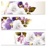 Επαγγελματικές κάρτες που τίθενται στο floral ύφος με τα λουλούδια Στοκ Φωτογραφίες