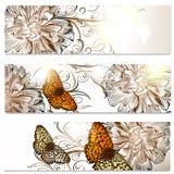 Επαγγελματικές κάρτες που τίθενται στο floral ύφος με τα λουλούδια παπαρουνών Στοκ Φωτογραφία