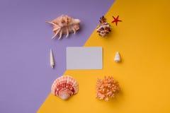 Επαγγελματική κάρτα με τα θαλασσινά κοχύλια Στοκ Εικόνες