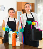Επαγγελματικοί καθαριστές με τα μέσα καθαρισμού Στοκ φωτογραφίες με δικαίωμα ελεύθερης χρήσης