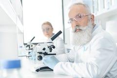 Επαγγελματικοί φαρμακοποιοί στα άσπρα παλτά που λειτουργούν με τα μικροσκόπια στο εργαστήριο Στοκ Φωτογραφίες
