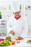 Επαγγελματικός αρχιμάγειρας-μάγειρας Στοκ Φωτογραφίες