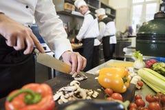 Επαγγελματικός αρχιμάγειρας στην εργασία Στοκ φωτογραφίες με δικαίωμα ελεύθερης χρήσης