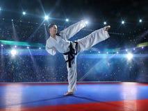 Επαγγελματικός θηλυκός karate μαχητής Στοκ εικόνες με δικαίωμα ελεύθερης χρήσης