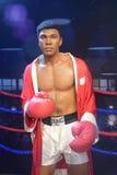 Επαγγελματικός μπόξερ του Muhammad Ali Στοκ Εικόνες