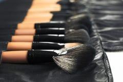 Επαγγελματικό σύνολο βουρτσών makeup σε περίπτωση δέρματος Στοκ Εικόνες