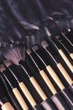 Επαγγελματικό σύνολο βουρτσών makeup σε περίπτωση δέρματος Στοκ εικόνες με δικαίωμα ελεύθερης χρήσης