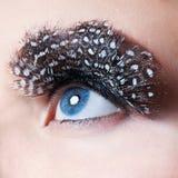 Επαγγελματικό Makeup eyelashes ψεύτικος στοκ φωτογραφία με δικαίωμα ελεύθερης χρήσης