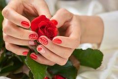Επαν αυξήθηκε στα όμορφα θηλυκά χέρια Στοκ φωτογραφίες με δικαίωμα ελεύθερης χρήσης