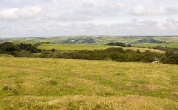 Επαρχία UK του Dorset Στοκ Εικόνες