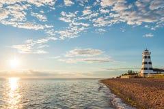 Επαρχιακός φάρος Park's αμμόλοφων κέδρων Στοκ εικόνα με δικαίωμα ελεύθερης χρήσης