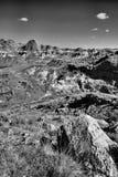 Επαρχιακό πάρκο Αλμπέρτα δεινοσαύρων στοκ εικόνες