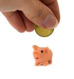 επενδύσεις Τράπεζα επιτιθεμένων χοίρος τραπεζών piggy Στοκ Εικόνες