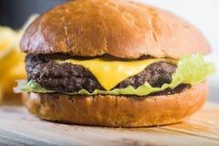 Επεξεργαμένος burger Στοκ Εικόνες