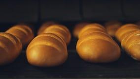 επεξεργασία φυτών τροφίμων Διαδικασία εργοστασίων ψωμιού φραντζολών Βιομηχανία αρτοποιείων απόθεμα βίντεο