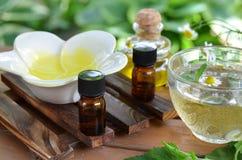 Επεξεργασία Aromatherapy με το βοτανικό τσάι Στοκ φωτογραφίες με δικαίωμα ελεύθερης χρήσης