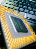 Επεξεργαστής Intel Pentium υπολογιστών Στοκ φωτογραφίες με δικαίωμα ελεύθερης χρήσης