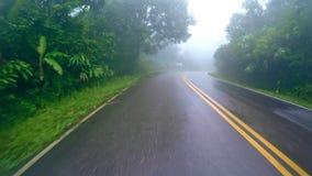 Επιβίβαση της κάμερας στον ομιχλώδη καιρό εθνικών οδών βουνών ασφάλτου απόθεμα βίντεο