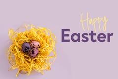 Επιγραφή ευτυχές Πάσχα και ζωηρόχρωμα αυγά ορτυκιών σε μια διακοσμητική φωλιά σε ένα πορφυρό υπόβαθρο Η έννοια του εορτασμού Πάσχ Στοκ Εικόνες
