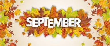 Επιγραφή Σεπτέμβριος πτώσης φυλλώματος φθινοπώρου απεικόνιση αποθεμάτων