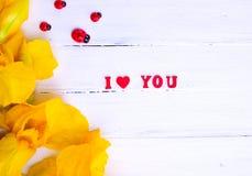 Επιγραφή σ' αγαπώ και κίτρινες ίριδες Στοκ εικόνα με δικαίωμα ελεύθερης χρήσης