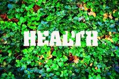 Επιγραφή, υγεία στα πλαίσια των πράσινων φύλλων Υγιής τρόπος ζωής στοκ εικόνες