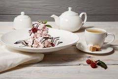 Επιδόρπια pavlova σμέουρων/γλυκά WI επιδορπίων μαρέγκας εύγευστα στοκ εικόνες με δικαίωμα ελεύθερης χρήσης