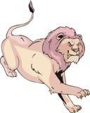 επιθετικό τρέξιμο λιοντα& διανυσματική απεικόνιση