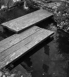 Επιθυμία της λίμνης στοκ φωτογραφίες με δικαίωμα ελεύθερης χρήσης