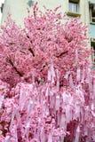 Επιθυμία του δέντρου, Hon Kong στοκ φωτογραφίες