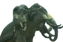 Επικεφαλής ελέφαντας τρία στο απομονωμένο άσπρο υπόβαθρο, κατώτατη άποψη Στοκ εικόνα με δικαίωμα ελεύθερης χρήσης