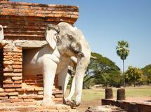 Επικεφαλής καταστροφές ναών ελεφάντων σε Sukhothai Ταϊλάνδη Στοκ φωτογραφία με δικαίωμα ελεύθερης χρήσης