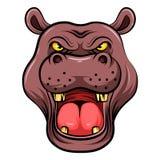 Επικεφαλής μασκότ ενός hippo ελεύθερη απεικόνιση δικαιώματος