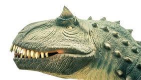 Επικεφαλής αρχαίος δεινόσαυρος Στοκ φωτογραφία με δικαίωμα ελεύθερης χρήσης