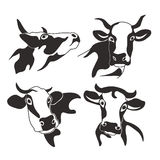 Επικεφαλής γάλα σκιαγραφιών βοοειδών αγελάδων διανυσματική απεικόνιση