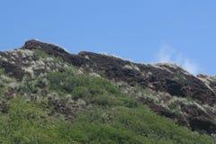 Επικεφαλής κρατικό πάρκο διαμαντιών, Oahu, Χαβάη Στοκ εικόνα με δικαίωμα ελεύθερης χρήσης
