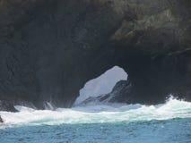 Επικεφαλής νησί πιθήκων Στοκ φωτογραφίες με δικαίωμα ελεύθερης χρήσης
