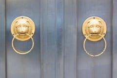 Επικεφαλής περιποίηση πορτών λιονταριών στοκ εικόνες