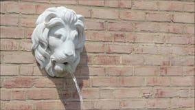 Επικεφαλής πηγή λιονταριών απόθεμα βίντεο