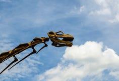 Επικεφαλής πρότυπο δεινοσαύρων με το μπλε ουρανό Στοκ Φωτογραφίες