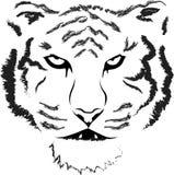 Επικεφαλής σκιαγραφία τιγρών, διάνυσμα απεικόνιση αποθεμάτων